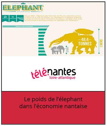 elephant-telenantes-hyblab